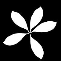Unity シェーダー アルファテスト